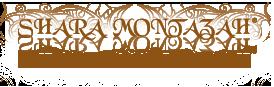 Shara Montazah Shop